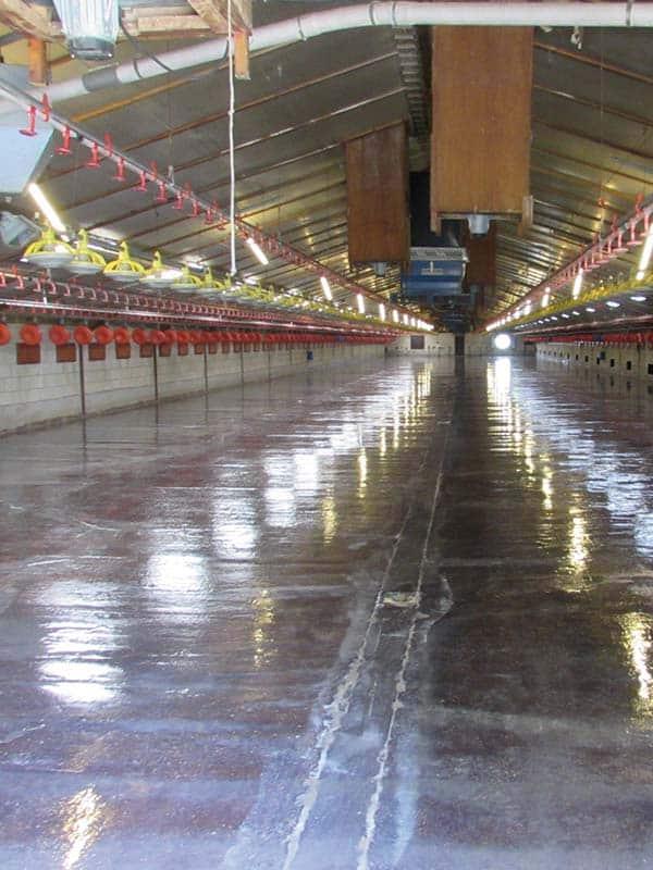 goede coatingvloer infectiedruk verlagen