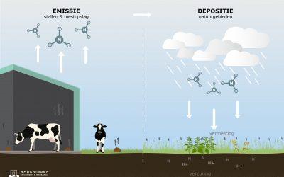 Hoe coating de emissie van ammoniak kan terugbrengen